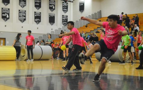 Dodgeball for a Cause