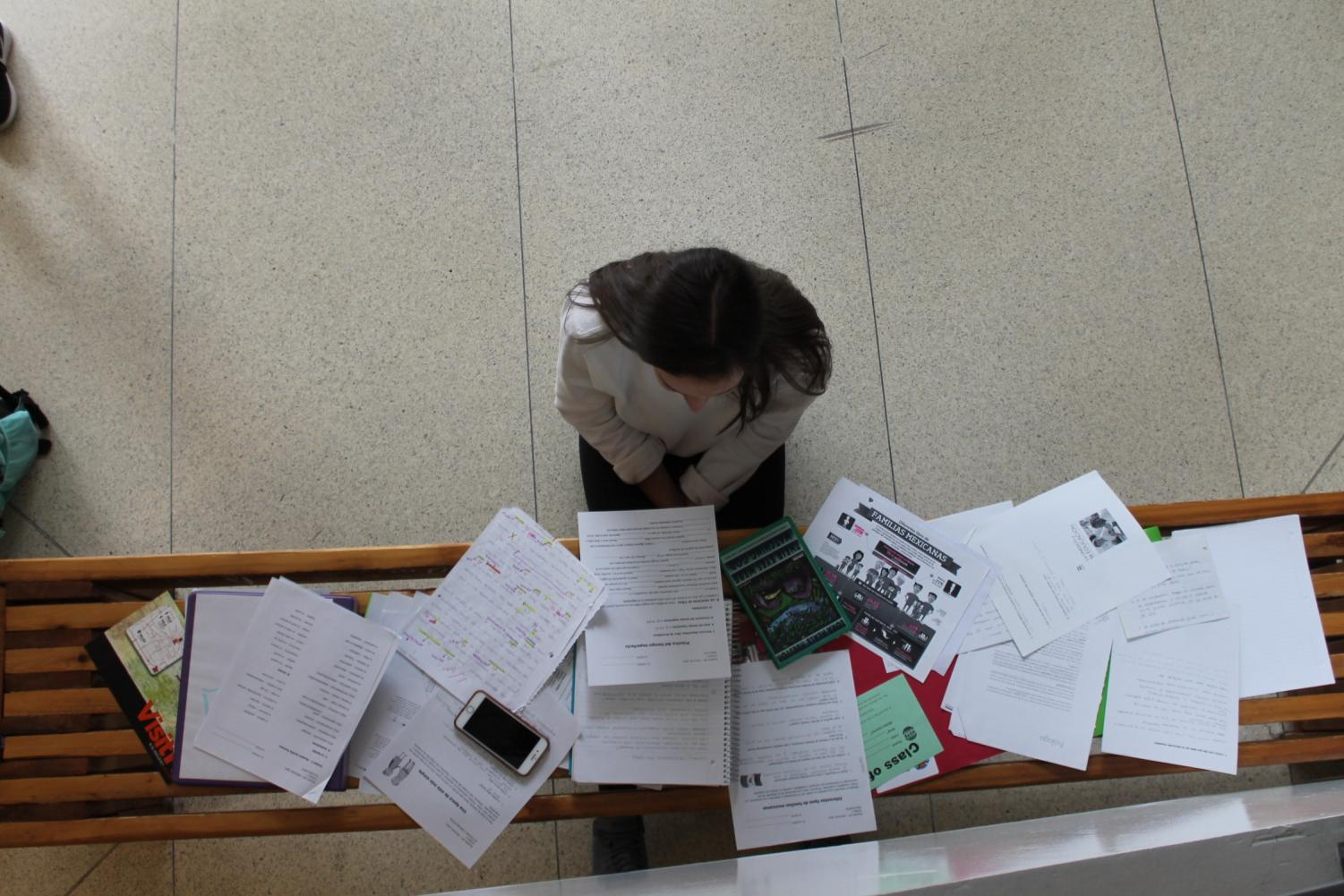 Senior Caroline Shabet reads over all of her papers from various classes.